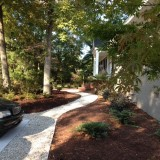 Sea shell path from parking area to front door